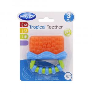 دندانگير پرتقالی پلی گرو playgro